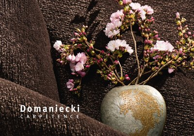 Domaniecki Carpetence-Website